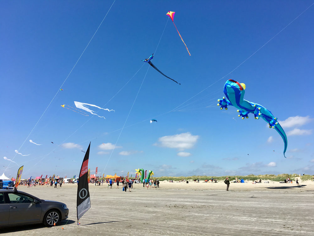 dub_kite_display2